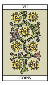 The Seven of Pentacles (Coins)